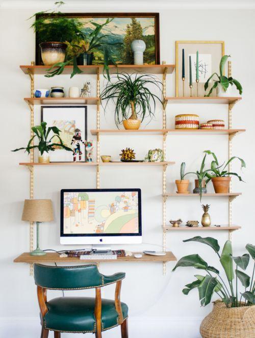 3 cách trang trí hiệu quả với cây trồng trong nhà
